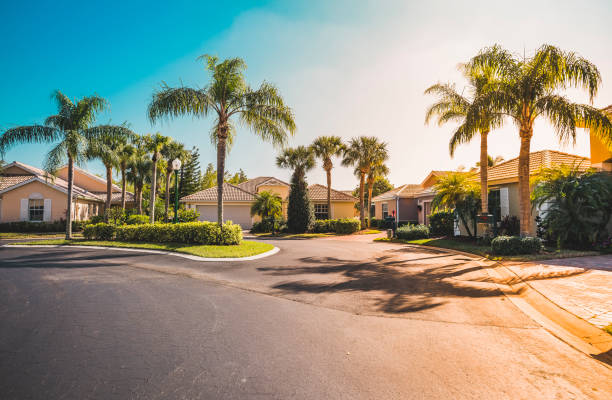 Gated community houses with palms, South Florida Typical gated community houses with palms, South Florida. Light effect applied residential district stock pictures, royalty-free photos & images