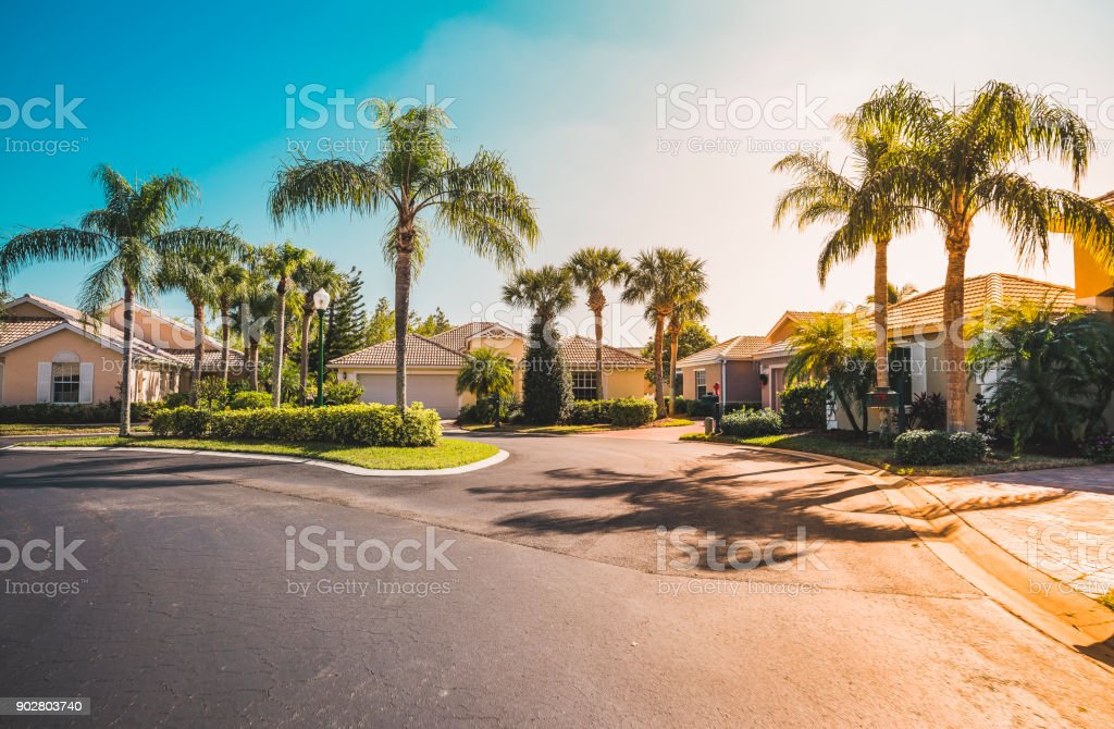 Gated community houses with palms, South Florida stock photo