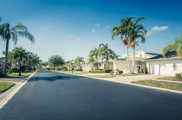 Gated community houses with palms, South Florida Gated community houses and empty asphalt road,  South Florida, United States gated community stock pictures, royalty-free photos & images