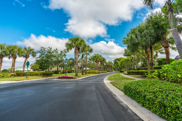 Gated community road with palms in South Florida Gated community road with palms and green landscape in South Florida, United States. Vintage colors gated community stock pictures, royalty-free photos & images