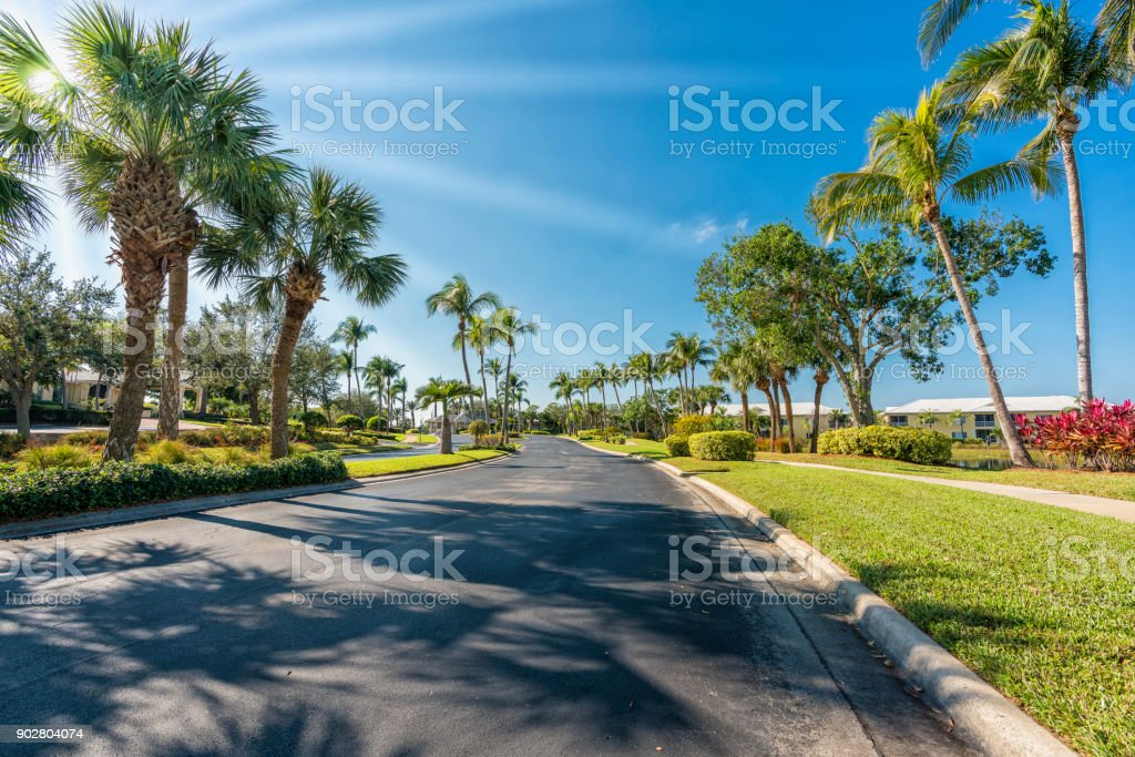 Gated community road with palms in South Florida stock photo