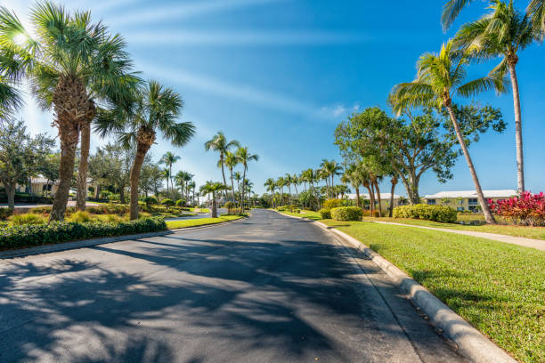 Gated community road with palms in South Florida Gated community road with palms, South Florida, United States. Sun rays gated community stock pictures, royalty-free photos & images