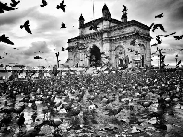 Portal da Índia - foto de acervo
