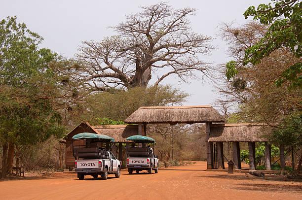 Gateway to the natural park of Bandia in Senegal - foto de stock