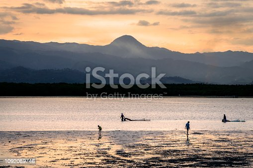Gathering shells at the sunset, Bais, Negros Oriental, Philippines