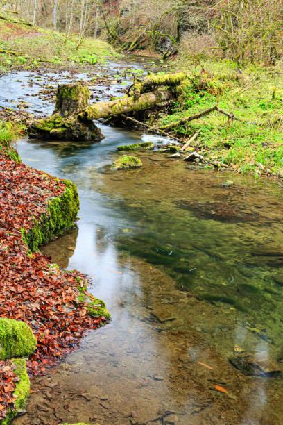 Gauchach im Herbst – Foto