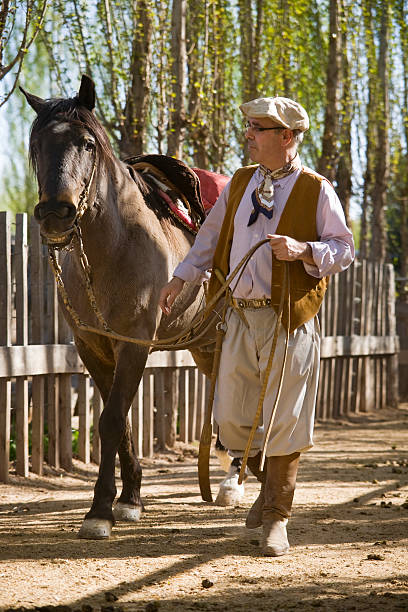 Gaucho and Horse stock photo