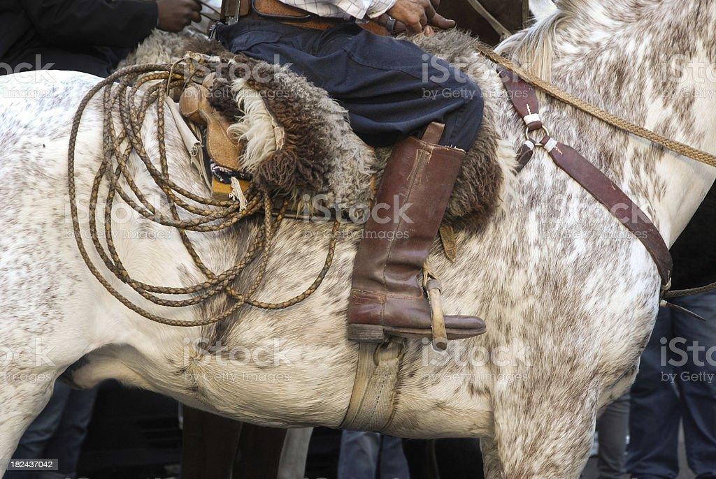 Gaucho, Argentina royalty-free stock photo