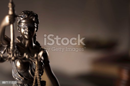 istock Gavel, open book  and paragraph. 897111320