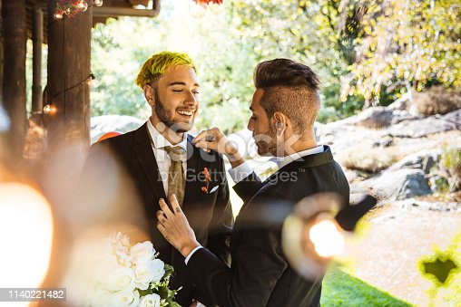 gay couple celebration for the civil marriage