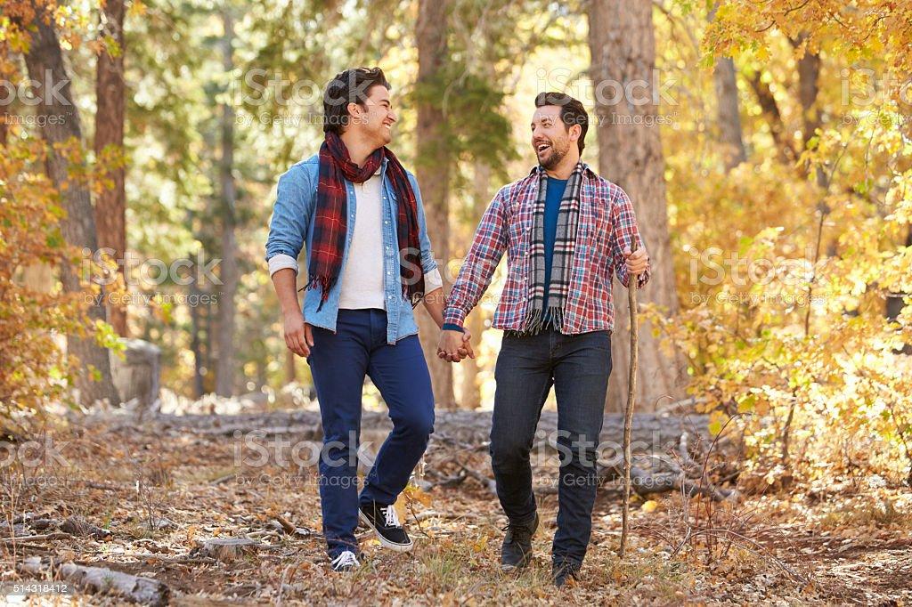 Гомосексуальная мужская пара