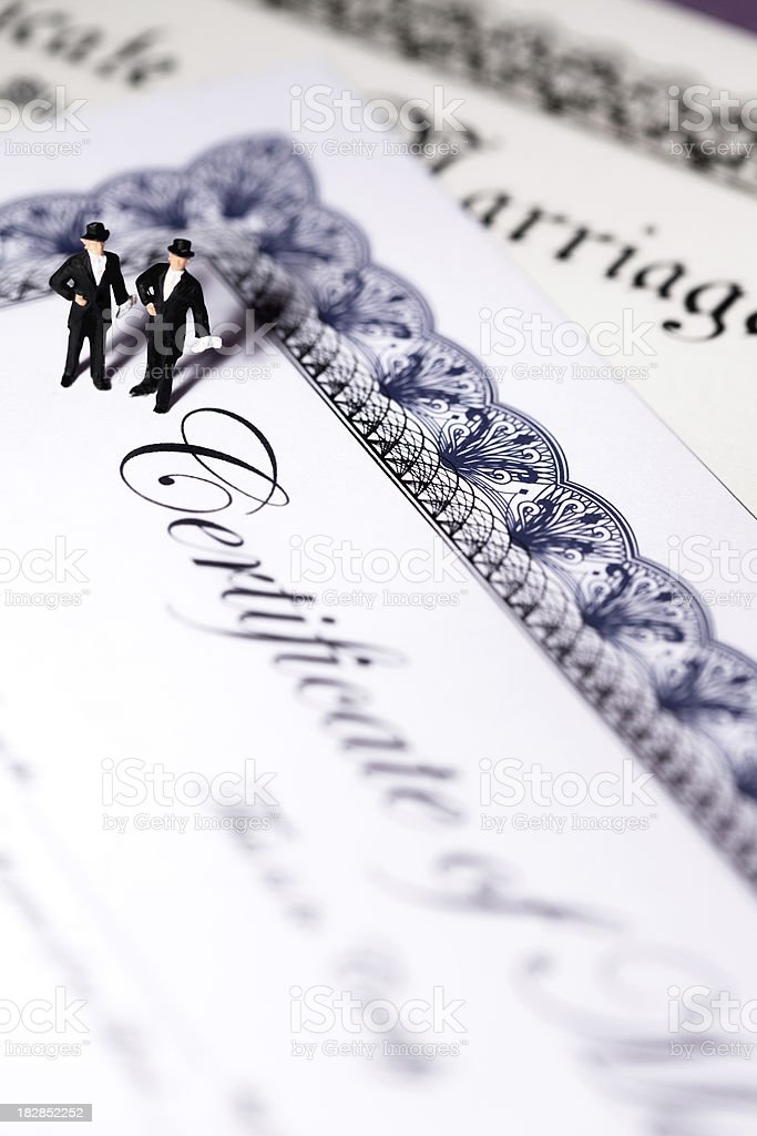Gay Marriage royalty-free stock photo