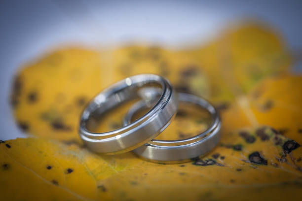 Gay Marriage Rings stock photo