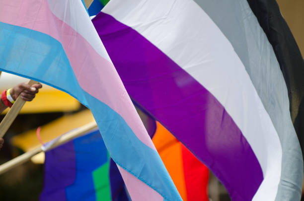 Gay Pride Rainbow, Transgender and Asexual Flags Close-up Abstract stock photo