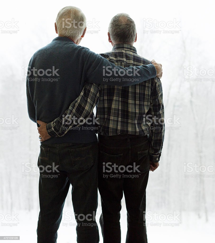 Gay senior couple embracing looking out at winter rear view royalty-free stock photo