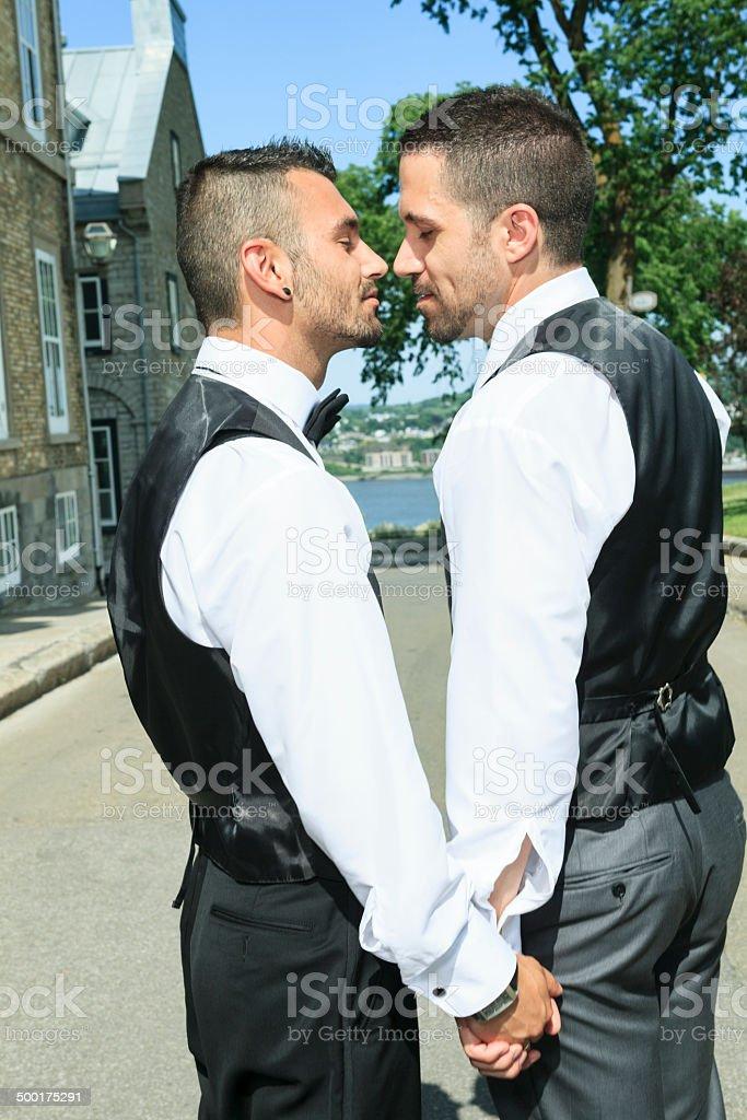 Gay Wedding - Vertical Hand royalty-free stock photo