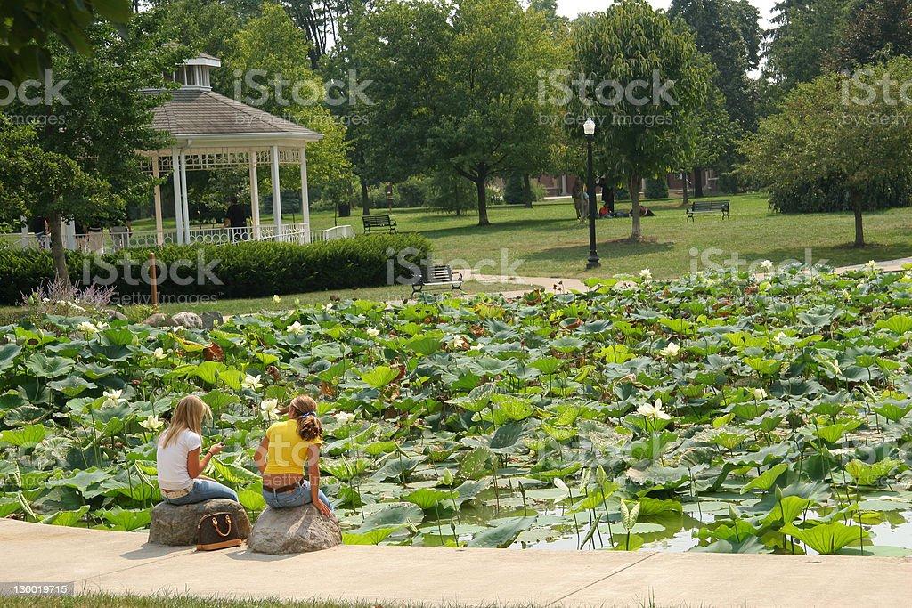 Gazebo and Lily Pond. Columbus, Ohio. stock photo