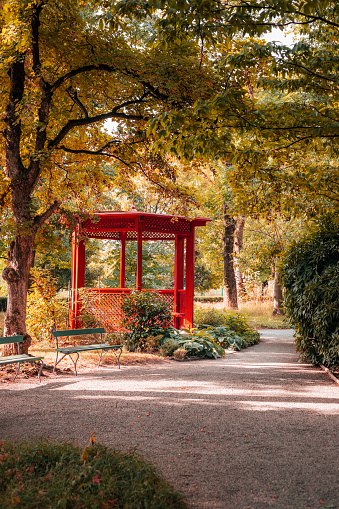 Gazebo in the autumn park. Beautiful nature.