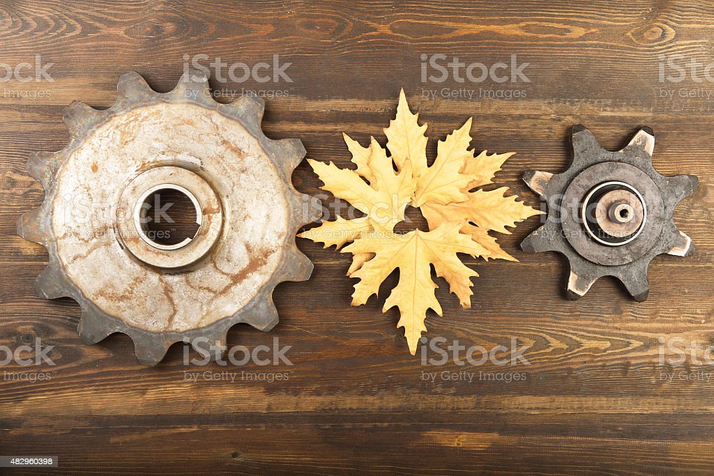 Gears contact with leaf on wooden background stock photo