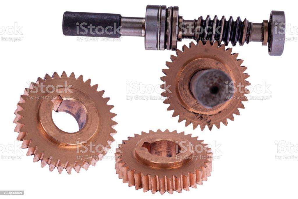 Gearwheel conical type stock photo