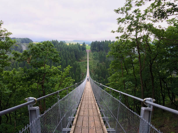 Geierlay suspension bridge Geierlay suspension bridge from south to north with a man taking pictures narrow stock pictures, royalty-free photos & images