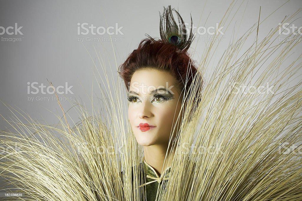 Retrato de una Geisha foto de stock libre de derechos
