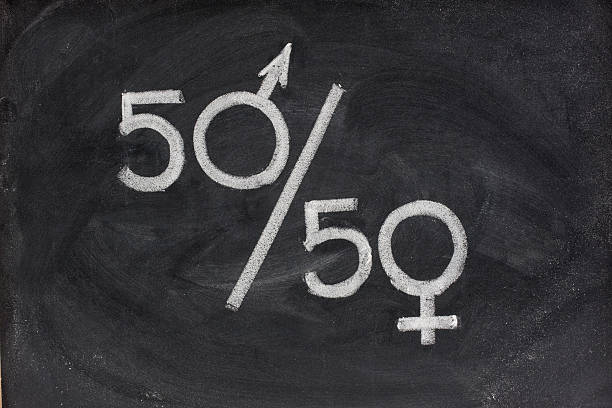 gender equal opportunity or representation fifty percent - concept of gender equal opportunity or representation in political and public life sketched with white chalk on blackboard women's rights stock pictures, royalty-free photos & images
