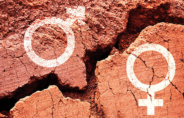 gender symbols on earth background with a big crack - uneven stock photos and pictures