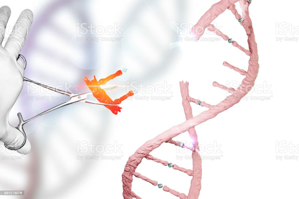 Gene Editing Gene Therapy Genome Editing DNA manipulation DNA editing gloved hand holding forceps in genes research stock photo