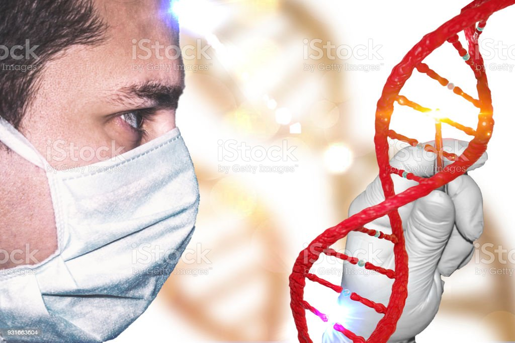 Gene Manipulation concept with lab technician laboratory doctor with gloved hand manipulating genome scientist and DNA stock photo