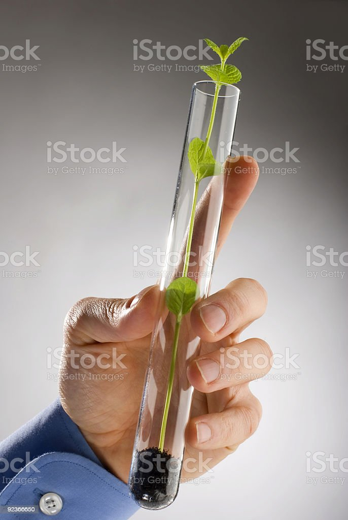 gene royalty-free stock photo