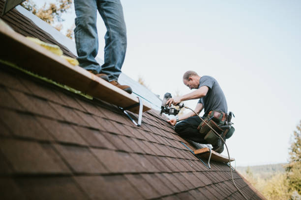 General Contractor Installing New Roof stock photo