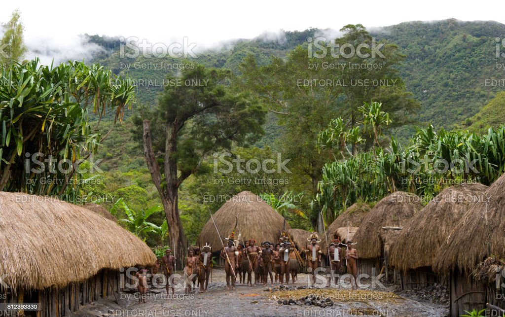 General view of the village of Dani tribe. stock photo
