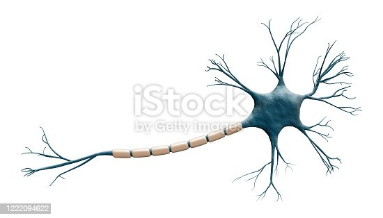 Generic blue neuron cell model isolated on a white background with copy space. Science, neuroscience, biology, microbiology, neurology 3d rendering illustration.
