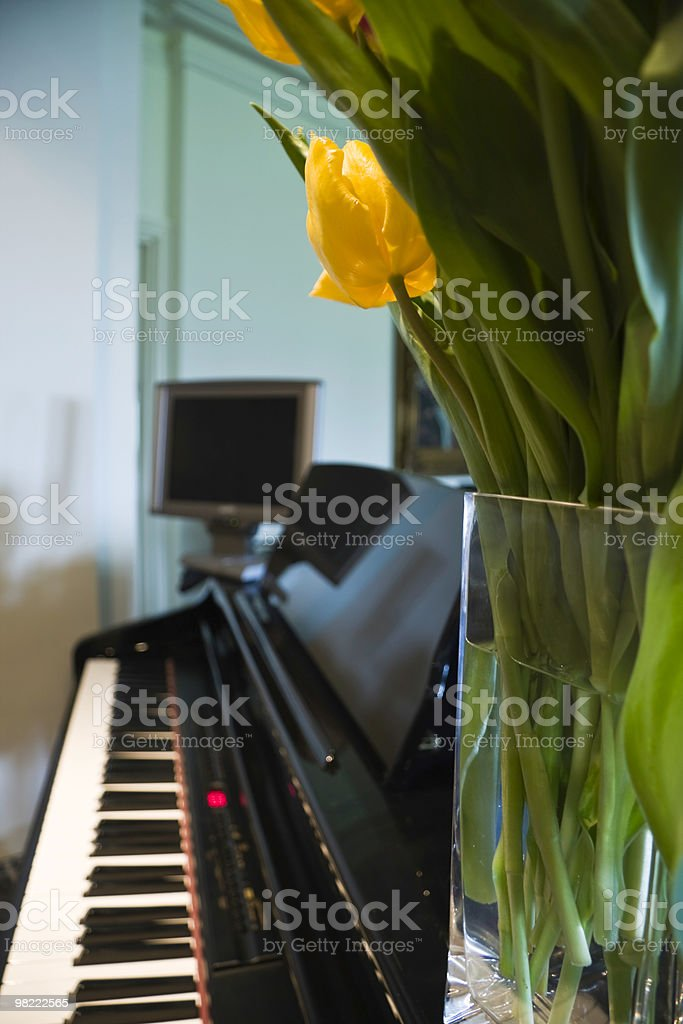 Generic electronic keyboard and flower royalty-free stock photo