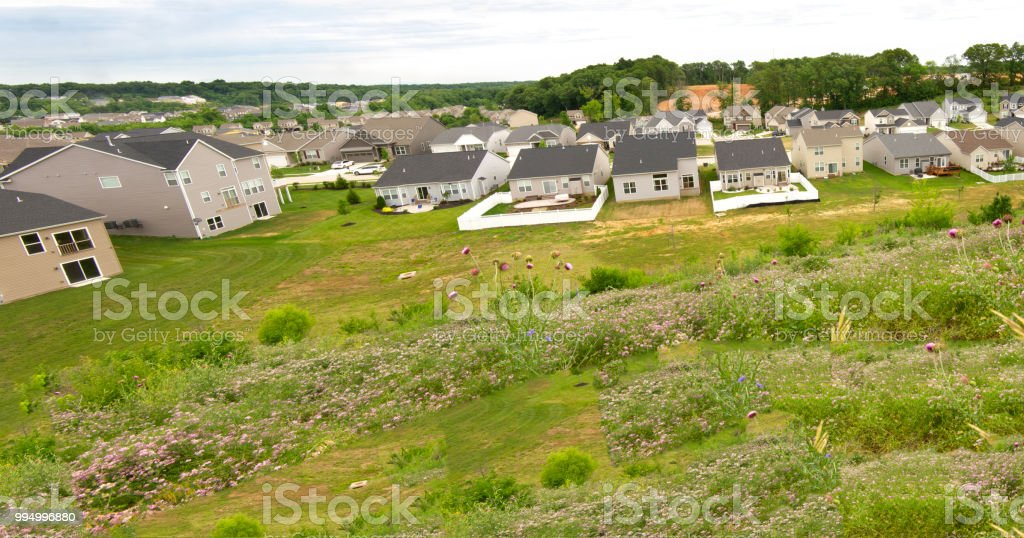 Generic Subdivision Of Beige Tract Homes Stock Photo More Pictures