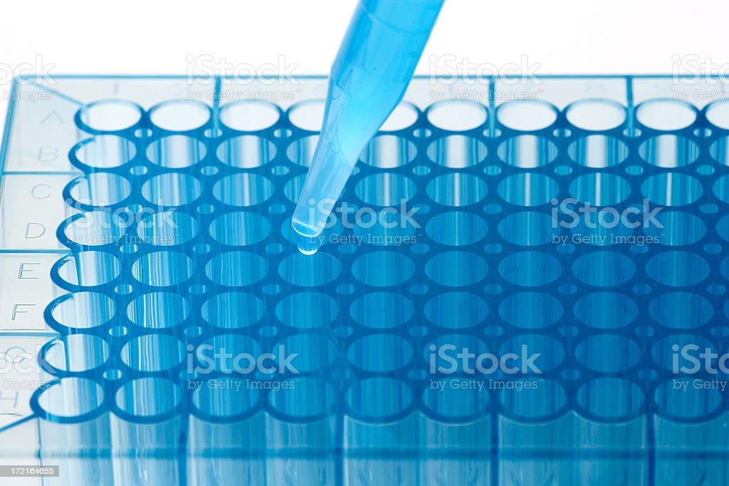 Genetic analysis royalty-free stock photo