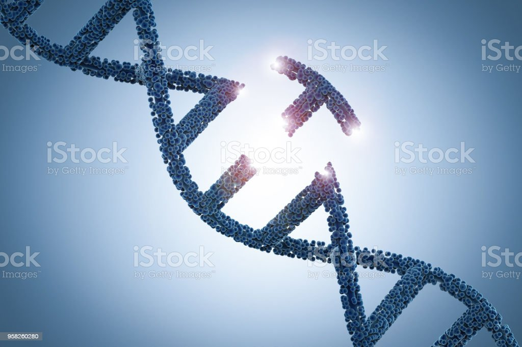 Genetic engineeering concept stock photo
