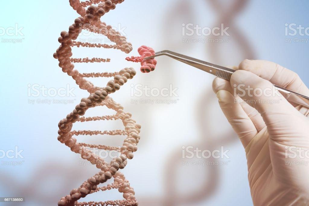 Concepto de manipulación genética y genes. Mano está reemplazando parte de una molécula de ADN. - Foto de stock de ADN libre de derechos