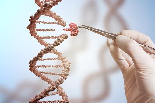 Concepto De Manipulación Genética Y Genes Mano Está Reemplazando Parte De Una Molécula De Adn Foto de stock y más banco de imágenes de ADN