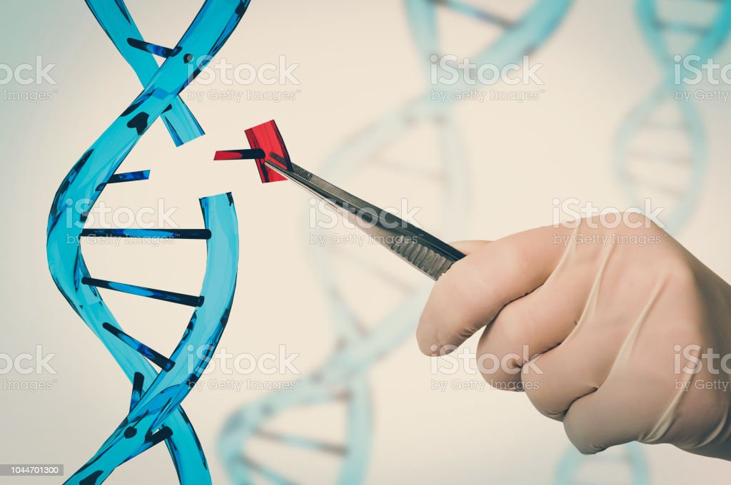 Genetic engineering and gene manipulation concept stock photo