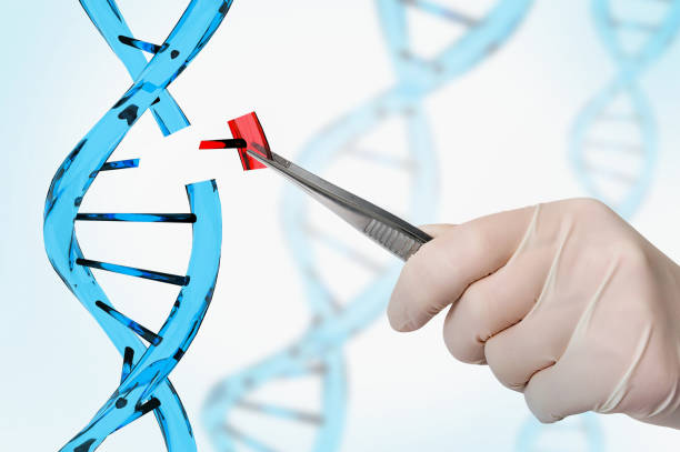 genetic engineering and gene manipulation concept - genetic modification stock photos and pictures