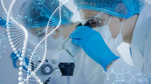 concepto de ingeniería genética. ciencias médicas. laboratorio científico. - investigación genética fotografías e imágenes de stock