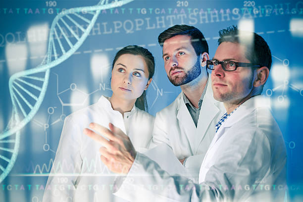 genetic engineering - genetic research stock pictures, royalty-free photos & images