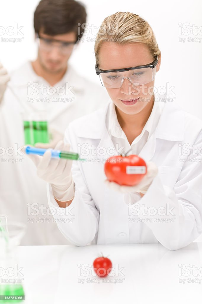 Genetic engineering - scientists in laboratory royalty-free stock photo