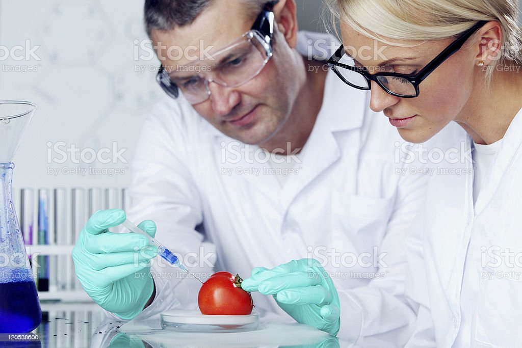 Genetic experiment royalty-free stock photo