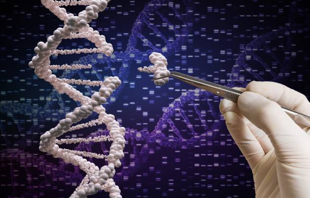 Genetic manipulation and DNA modification concept. stock photo