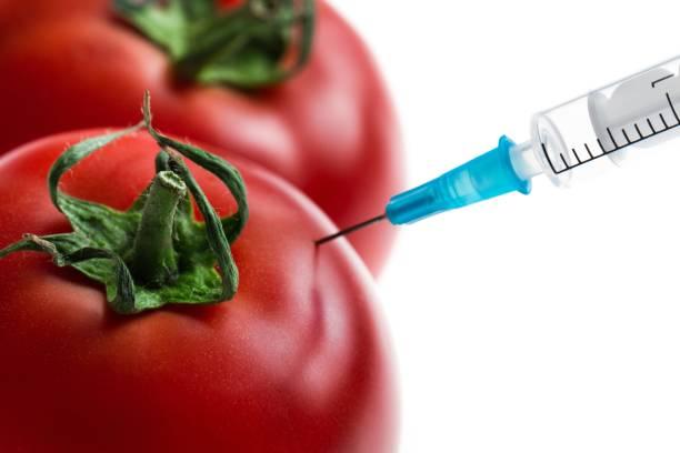 Genetic modification. stock photo