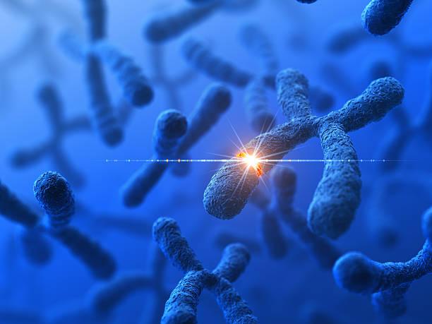 modificazione genetica - mutazione genetica foto e immagini stock