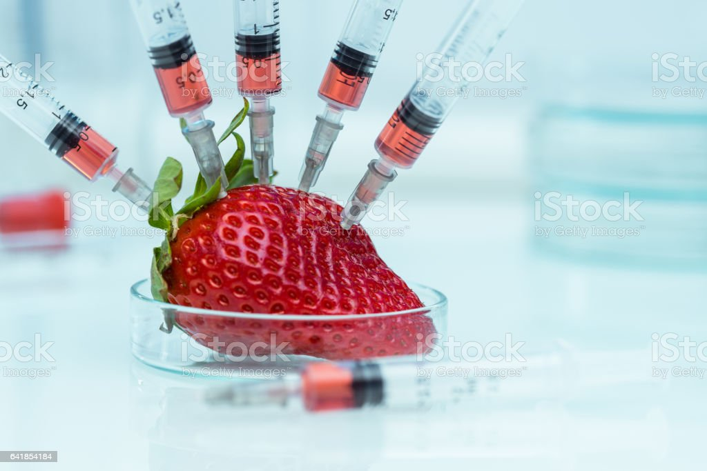 Genetic modification stock photo